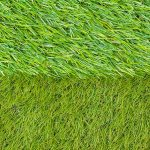 Two types of Artificial Grass