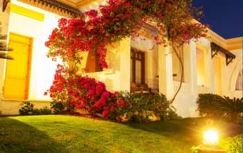 Landscape Outdoor Lighting Tips