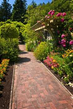 summer garden with paved path - avoid paving mistakes